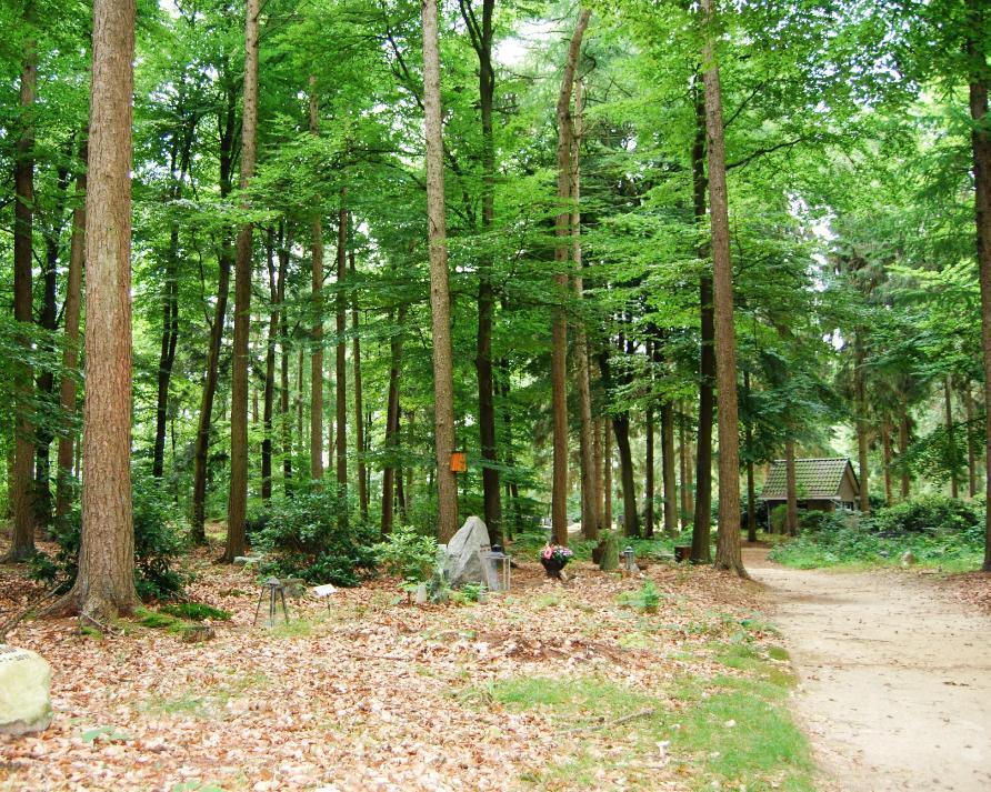 Natuurbegraafplaats Witteveen